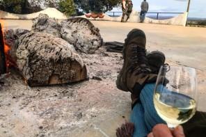 Monteria i Portugal. Dag 1