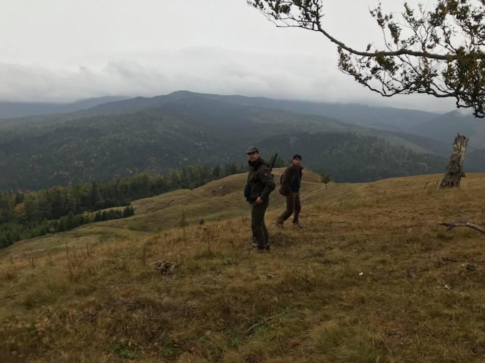 Hjortejagt i Karpaterne