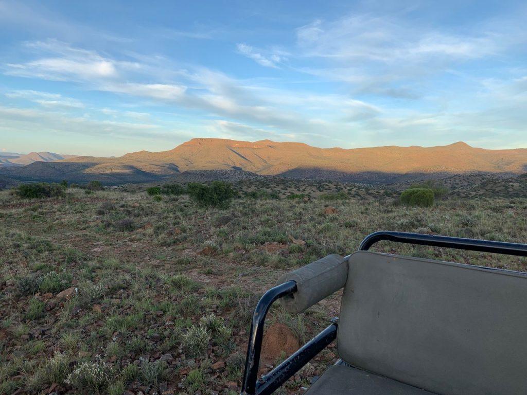 jagt i Sydafrika