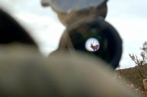 Jagtfilm: Kronhjorte i Skotland