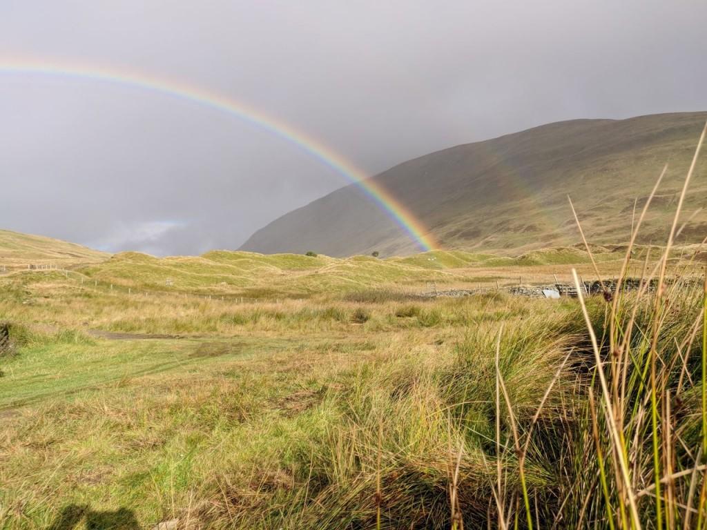 Hjortejagt i Skotland10